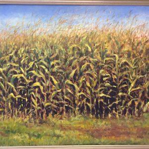 Inside the Corn