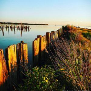 Claiborne Point