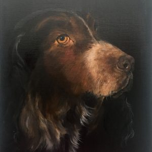 Spaniel-8x10-oil-by-Pat-Lang-.jpg