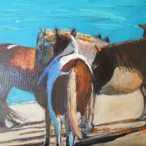 Asseteague Ponies Huddle on Beach