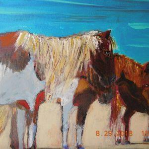 Asseteague Ponies on the Beach